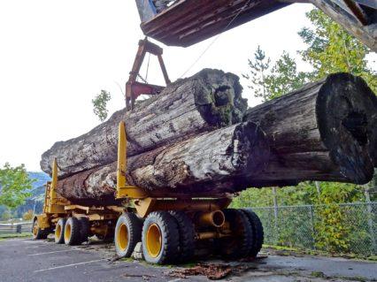 image-lumber-1713722_1920